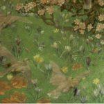 Крокусы: цветы радости